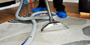 carpet cleaner multi coloured rug cleaning